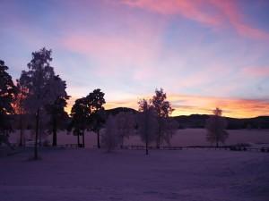Vinter.9